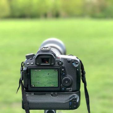 Die Canon EOS 100D – Einsteigermodell für Fotografen